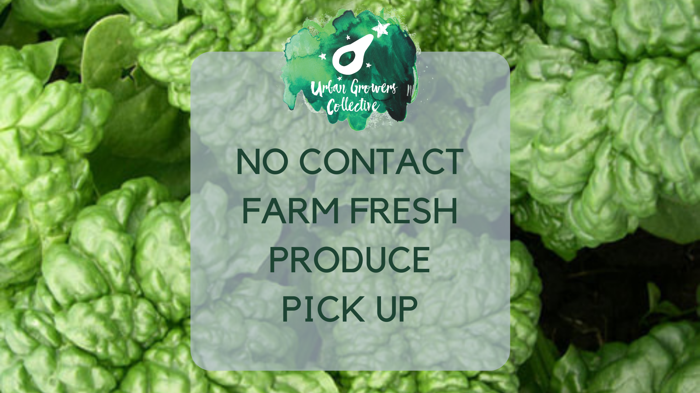 Covid-19 'No-Contact' Produce Pick-up